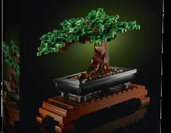 Lego Botanical Collection: i nuovi set per gli amanti dei fiori!